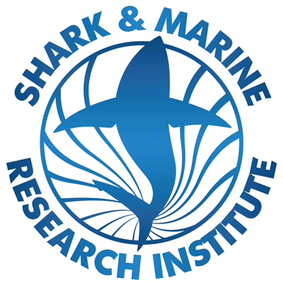 The Shark & Marine Research Institute | Learn All About
