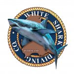 White Shark Diving Company - Founder of Shark & Marine Research Institute